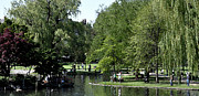 Boston Digital Art Metal Prints - Boston Common Metal Print by Kirt Tisdale