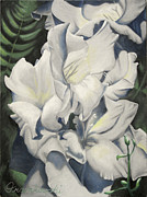 Gladiola Paintings - Boston Gladiola by Craig Frankowski