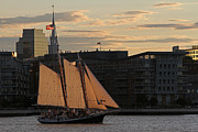 Juergen Roth - Boston Harbor Sailing on the Schooner Liberty Star