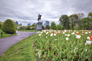 Garden Scene Metal Prints - Boston Public Garden Metal Print by Eric Gendron
