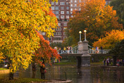 Fall In New England Metal Prints - Boston Public Garden Lagoon Bridge Metal Print by Joann Vitali