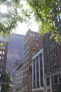 Busy City Photos - Boston Street by Ashlee Meyer