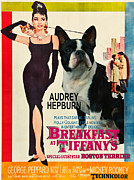 Boston Terrier Art Paintings - Boston Terrier Art - Breakfast at Tiffany Movie Poster by Sandra Sij