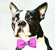 Pink Flower Prints Framed Prints - Boston Terrier Art - The Nervous Groom Framed Print by Sharon Cummings