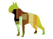 Boston Terrier Print by Irina  March