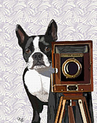 Wall Decor Framed Prints Digital Art - Boston Terrier Photographer Look Doggie by Kelly McLaughlan
