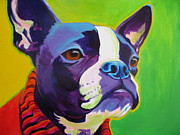 Dawgart Metal Prints - Boston Terrier - Ridley Metal Print by Alicia VanNoy Call