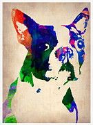 Boston Painting Metal Prints - Boston Terrier Watercolor Metal Print by Irina  March