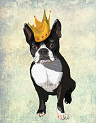 Dogs Digital Art Prints - Boston Terrier with a Crown Print by Kelly McLaughlan