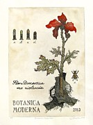 Etching Reliefs - Botanica Moderna by Carroll Woods