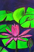 City Garden Drawings - Botanical Lotus 1 by Grace Liberator
