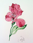 Swift Painting Originals - Botanical Work by Rand Swift