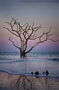 Carrie Cranwill - Botany Bay Sunset 1