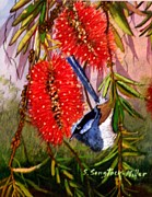 """wildlife Cards"" Painting Posters - Bottle Brush and Wren Poster by Sandra Sengstock-Miller"