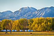 James BO  Insogna - Boulder County Colorado Flatirons Autumn View