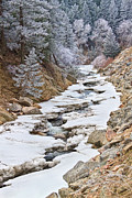 James BO  Insogna - Boulder Creek Frosted Snowy Portrait View