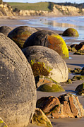 Low Tide Prints - Boulders Moeraki Otago New Zealand Print by Colin and Linda McKie