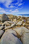 Abc Photos - Boulders of Aruba VI by David Letts