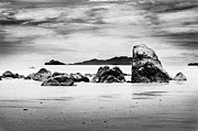 Boulders On The Beach Print by William Voon