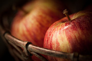 Apples Metal Prints - Bountiful Metal Print by Amy Weiss