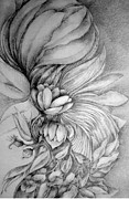Cornucopia Drawings - Bouquet by Rosanne Licciardi