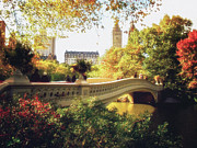 Central Park Skyline Prints - Bow Bridge - Autumn - Central Park Print by Vivienne Gucwa