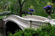 Central Park Prints - Bow Bridge Flower Pots - Central Park N Y C Print by Christiane Schulze