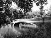 Trees And Bridge Prints - Bow Bridge in Black and White Print by Jessica Jenney
