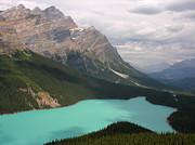 Robert Lozen - BOW LAKE ALBERTA CANADA