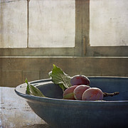 Sally Banfill - Bowl Full of Plums