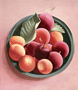 Plum Framed Prints - Bowl of Fruit Framed Print by Tomar Levine