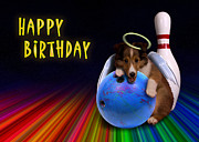 Jeanette K - Bowling Birthday Sheltie Puppy