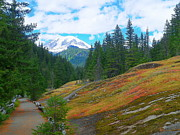 Mount Washington Mixed Media Prints - Box Canyon Trail - Mount Rainier National Park Print by Photography Moments - Sandi