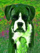 Boxer Puppy Digital Art Posters - Boxer 20130126v3 Poster by Wingsdomain Art and Photography