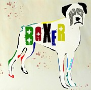 Boxer Mixed Media Framed Prints - Boxer Framed Print by Brian Buckley