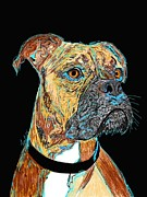 Boxer Dog Drawings Framed Prints - Boxer - Bud Framed Print by Bert Hornbeck