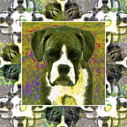 Boxer Puppy Digital Art Posters - Boxer Dog 20130126 Poster by Wingsdomain Art and Photography