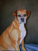 Boxer Painting Prints - Boxer Dog  Print by Anne Brookover