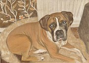 Boxer  Drawings Prints - Boxer Dog George Print by Faye Giblin