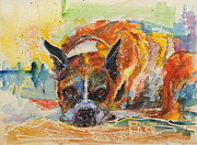 Boxer Painting Prints - Boxer dog Samson at 10 years old Print by Kittie Deemer