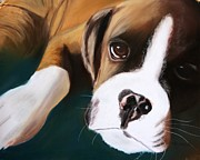 Boxer Pastels Prints - Boxer Print by Michele Turney