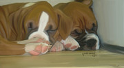 Boxer Painting Framed Prints - Boxer Puppies Framed Print by Nydia Williams