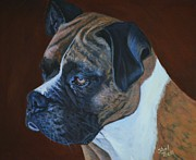 Brown White Dog Framed Prints - Boxer Framed Print by Shirl Theis