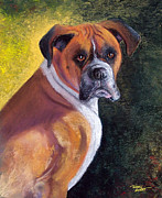 Boxer Painting Framed Prints - Boxer Framed Print by Terry Albert
