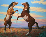 Wildlife Sunset Posters - Boxing Horses Poster by James W Johnson