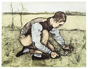 Boy Drawings Framed Prints - Boy Cutting Grass with a Sickle Framed Print by Vincent Van Gogh