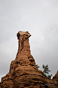 Boynton Canyon Prints - Boynton Canyon IV Print by Dave Gordon