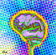 Brain Pop Print by Olaf Del Gaizo