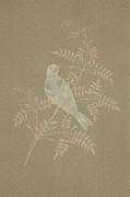 Bramble Finch-2 Photoart Print by Becky Hayes