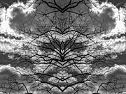 Digital Art Prints - Branches and Clouds Mirrored Print by Robert Ullmann